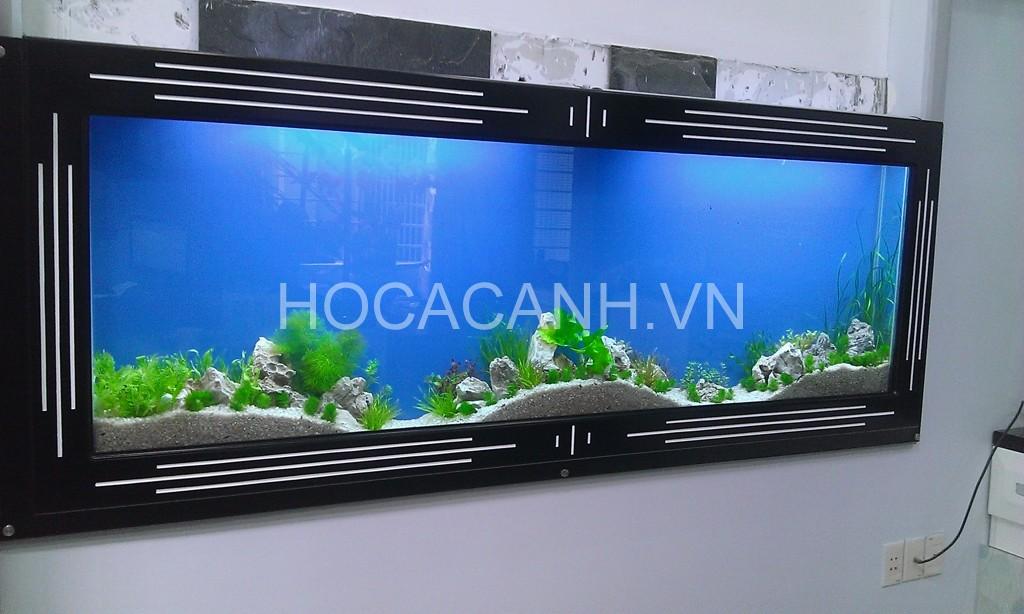 Hồ thủy sinh treo tường kiểu khung mới 2014